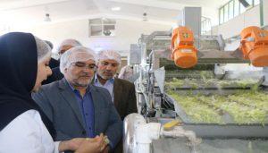 00000 083 300x171 - افتتاح خط تولید شرکت تعاونی متین سبز زاینده رود در شهرستان فلاورجان