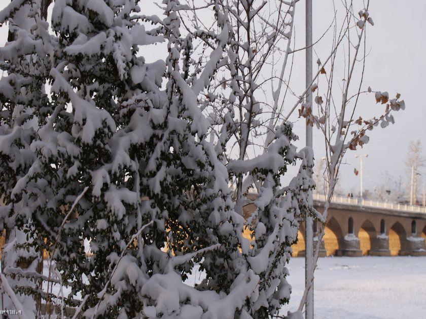 بارش برف زمستانی در فلاورجان +تصاویر
