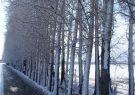 مناظر زیبا از فصل زمستان در جاده روستایی+تصاویر