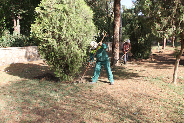 انجام عملیات اصلاح تشتک و ایجاد آبخور درختان پارک میثم فلاورجان انجام شد