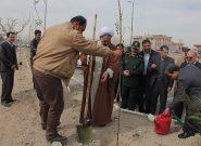 مراسم روز درختکاری در فلاورجان  برگزار شد