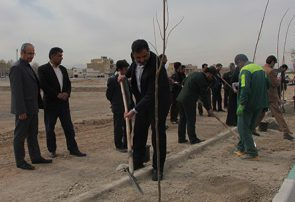 توزیع ۱۵۰۰ اصله نهال در محل برگزاری نماز جمعه شهر فلاورجان