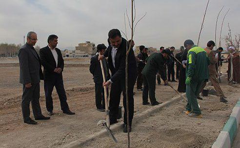 شهردار فلاورجان :توزیع بیش از ۳۰۰۰ اصله نهال برای هفته منابع طبیعی در شهر فلاورجان