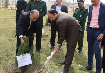 شهردار کلیشاد وسودرجان :جلوه  شدن یاد  و خاطره  شهیدان در شهر  با غرس نهال