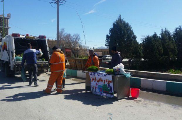 جمع آوری سبزه و ماهی قرمز در شهرستان فلاورجان