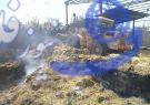 آتشسوزی در انبار علوفه یک گاوداری در زازران