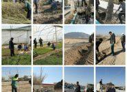 آیین درختکاری در فلاورجان برگزار شد