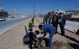 کاشت نهال به مناسبت روز درختکاری در  شهر  ایمانشهر