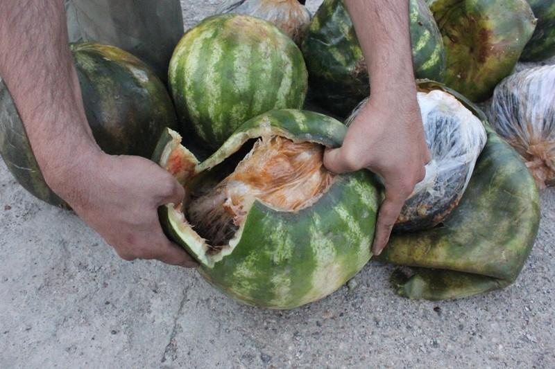 هندوانه های تریاکی به مقصد نرسید